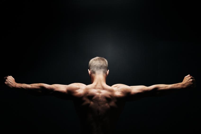 za izgradnju mišića