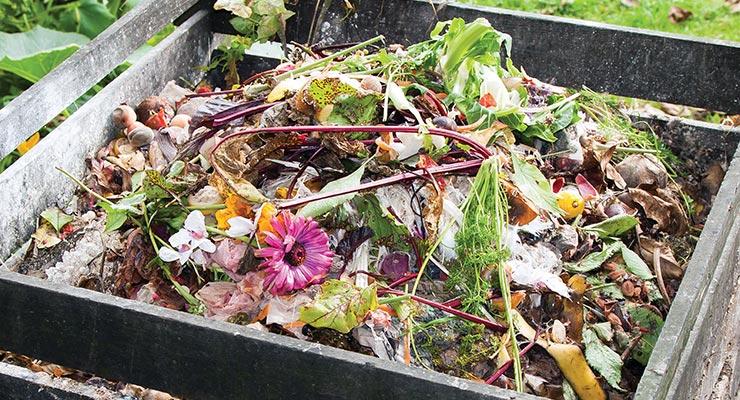 Šta je biorazgradivi otpad